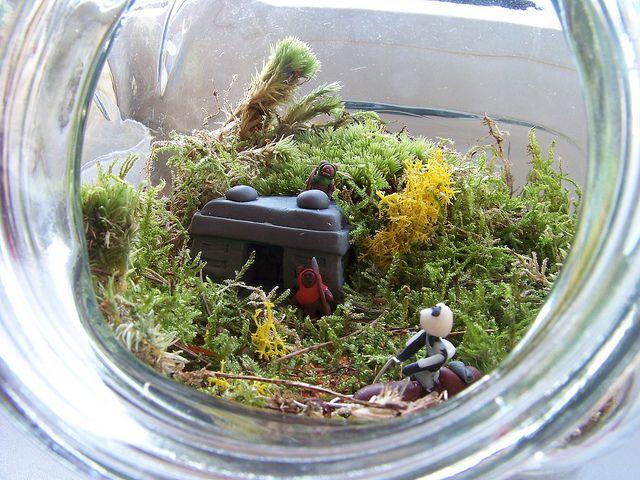 Star Wars terrarium  Ep.VI, bunker on Endor