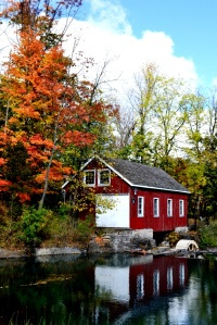 If you've never been you should head to Decew Falls and The Morningstar Mill in St. Catharines - the Bruce Trail wraps along the escarpment and the fall colours are spectacular!
