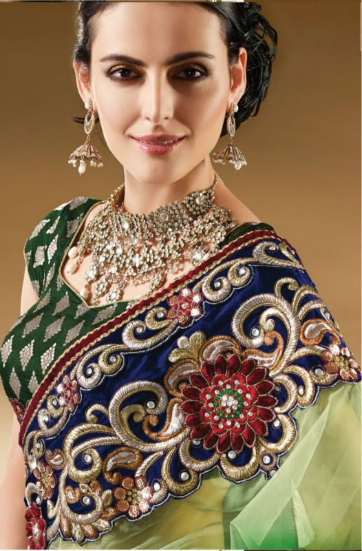 http://i00.i.aliimg.com/photo/v0/138144198/Indian_Designer_Green_Net_Saree.jpg