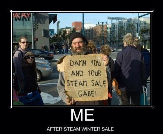 Steam Winter Sale  - www.meme-lol.com