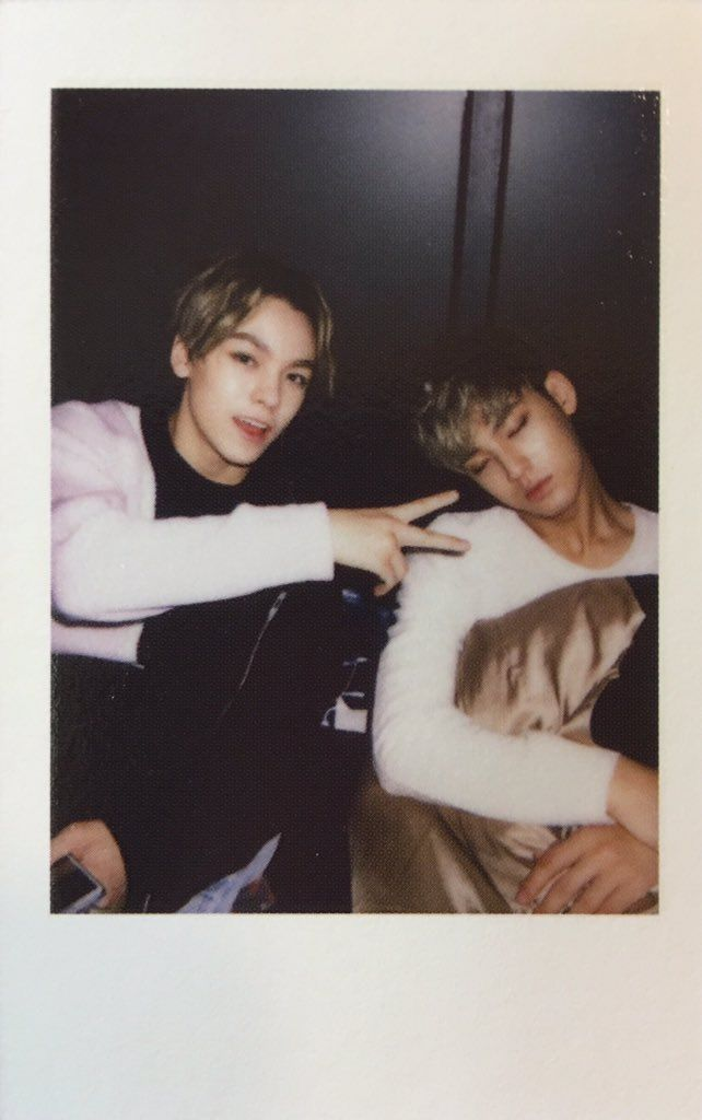 vernon || mingyu || seventeen @plstaigav