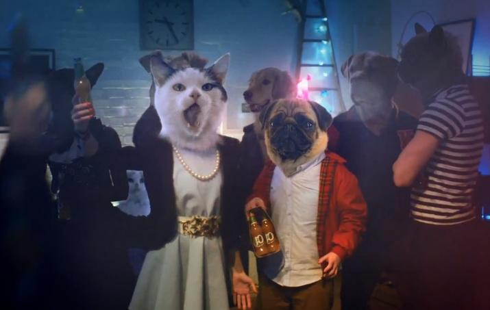 C'est ce qui s'appelle s'entendre comme chien et chat http://www.culturepub.fr/videos/j2o-a-bottle-of-togetherness