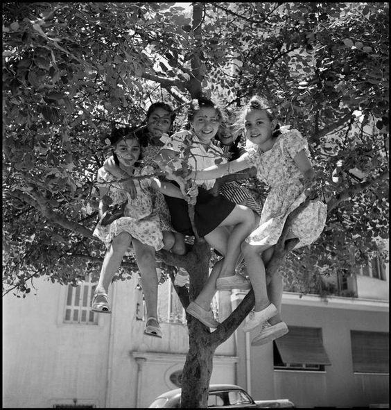 Village girls perched in a tree. GREECE. 1948. David Seymour