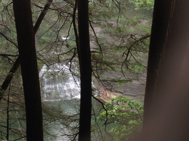 Swam at bottom of these falls in finger lakes, new york.  Beautiful.