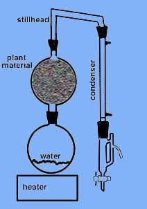 ESSENTIAL OIL Steam Distillation Steam Distiller