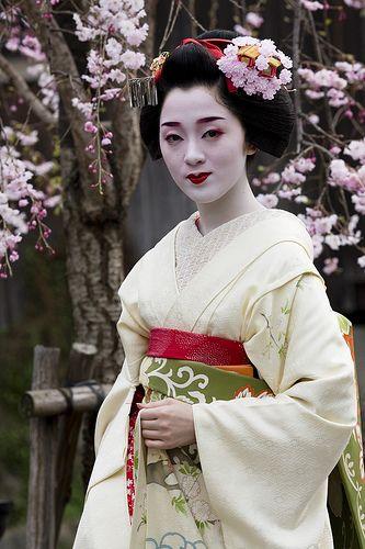 Maiko blossoms
