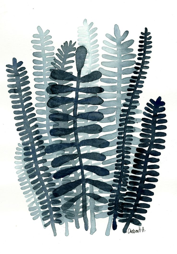 Fronds No.06 Black & white watercolour painting by Chelsea H-A  www.ChelseaH-A.com