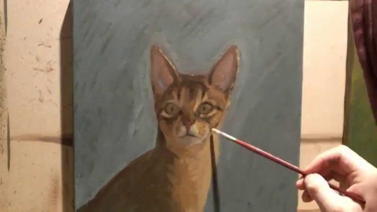 Mr. Cat oil on linen by Ortiz M.