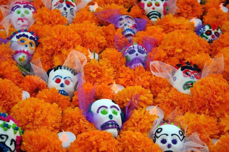Cempasúchil y calaveras. | Dia de Muertos | Pinterest
