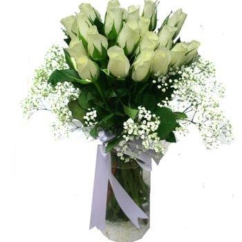 beyaz gonca http://www.trabzonflowers.com/