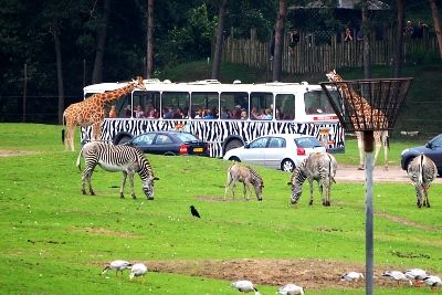 Days out diary - Eurocamp holiday in Holland (part 2) – Beekse Bergen Safari Park camp site at Hilvarenbeek