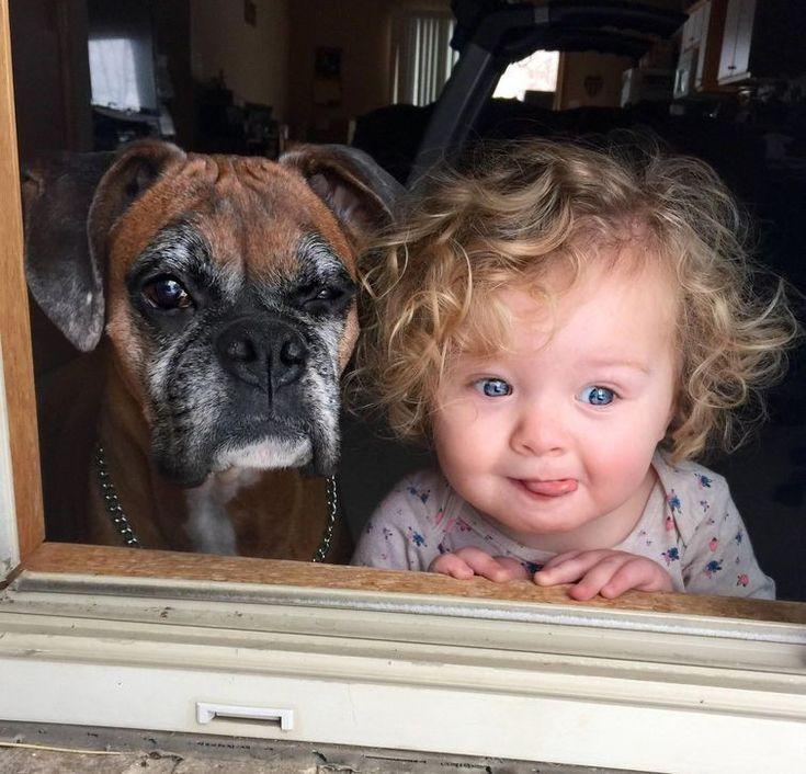 Смешные животные с детьми фото
