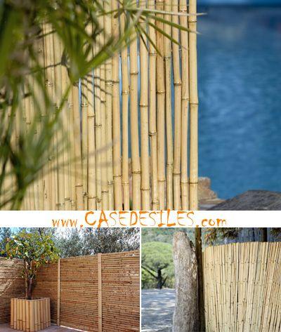 ponad 25 najlepszych pomysłów na pintereście na temat cloture bambou