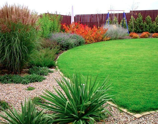 ogród projektowanie aranżacje juka karolińska trawy ozdobne krzewy iglaki kamień