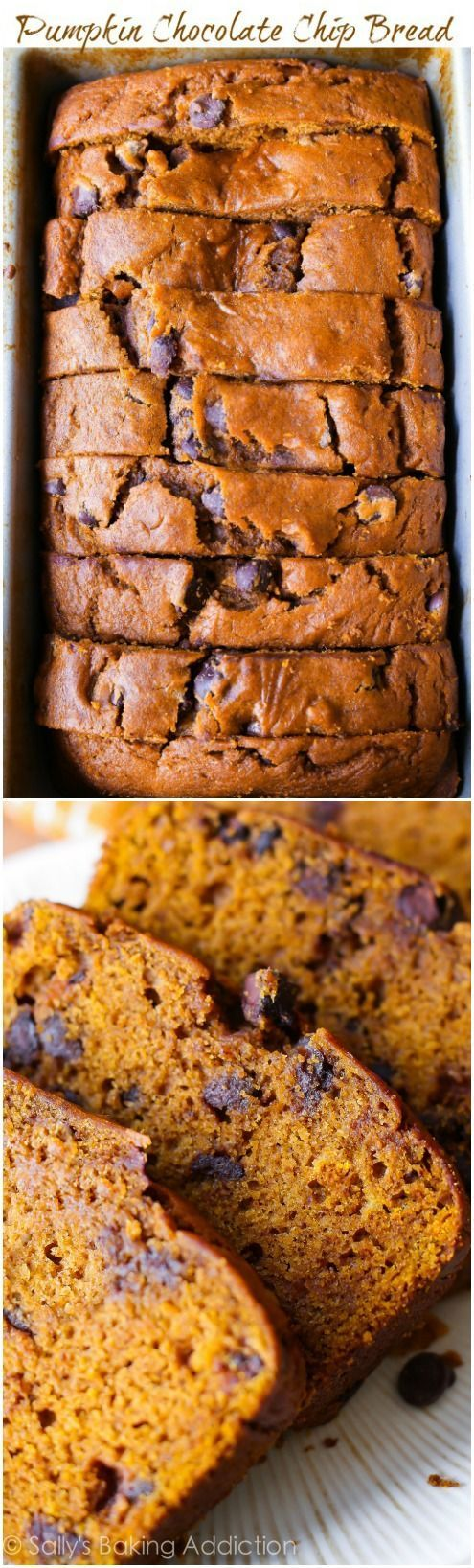 It's pumpkin season! Make the most of this season by whipping by this pumpkin chocolate chip bread.