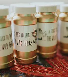 little rental co. | wild one birthday party | where the wild things are party favor bubbles