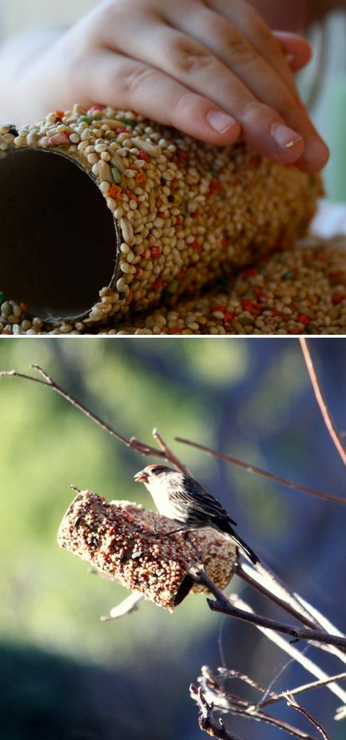 Cover a toilet paper tube in peanut butter and roll in bird seed. Then just slide it on a branch. Fun craft for kids!