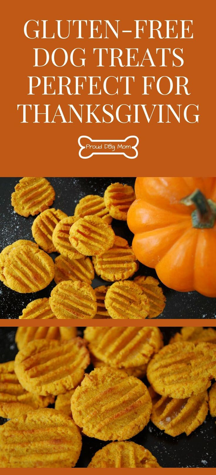 DIY Dog Treats: Sweet Potato Pumpkin Bites Perfect For Thanksgiving | Gluten-Free Dog Treats | Healthy Dog Treats | Homemade Dog Treats |