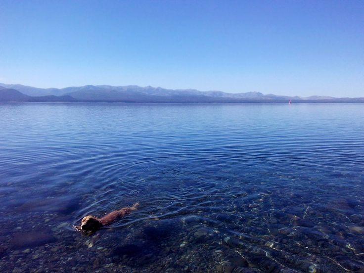"""24° La temperatura actual en Bariloche. El """"Verano"""" todavía da la oportunidad a quienes se le animan al lago.  Bariloche.Org"""