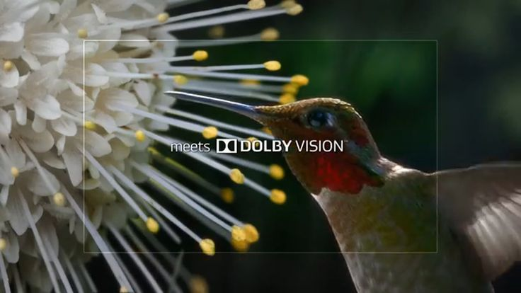 LG 2016 SUPER UHD TV - DOLBY VISION HDR TV Commercial ad advert 2016  LG TV Commercial • LG advertsiment • 2016 SUPER UHD TV - DOLBY VISION HDR • LG 2016 SUPER UHD TV - DOLBY VISION HDR TV commercial • The LG IPS 4K Quantum Display combined with Dolby Vision advanced HDR creates richer color, revealing a stunning new world. LG SUPER UHD TV with DOLBY VISION HDR.  #LG #android #Samsung #HTC #Apple #technology #Smartphone #tech #xioami #Google #technology #AbanCommercials