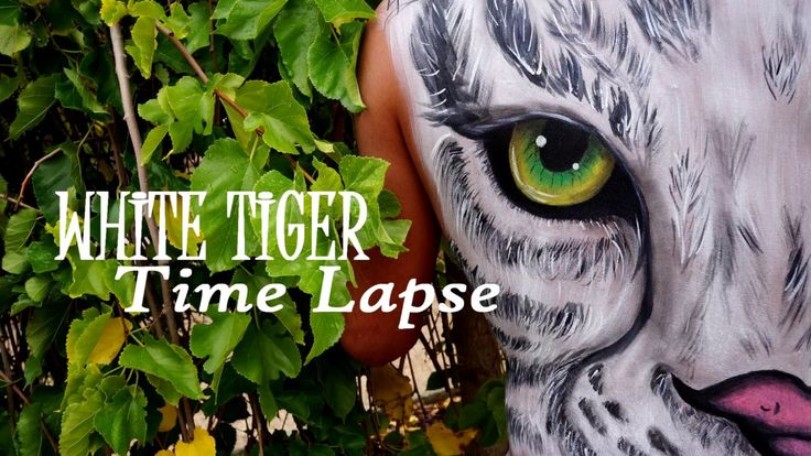 White Tiger / Body Painting Time lapse
