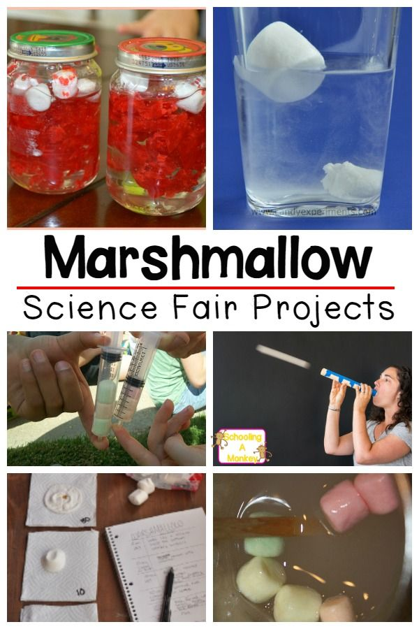 list of science fair projects Sign up and see why 188,632 people can't wait to open their inbox every week.
