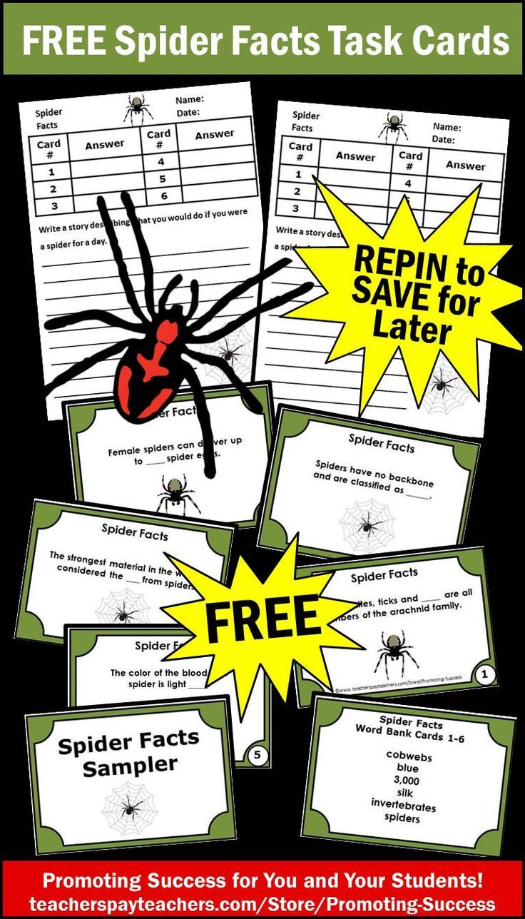 Free Halloween Spiders Activities & Games with Task Cards