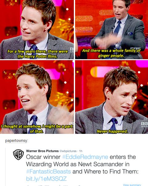 Eddie Redmayne - Newt Scamander - Fantastic Beasts and Where to Find Them