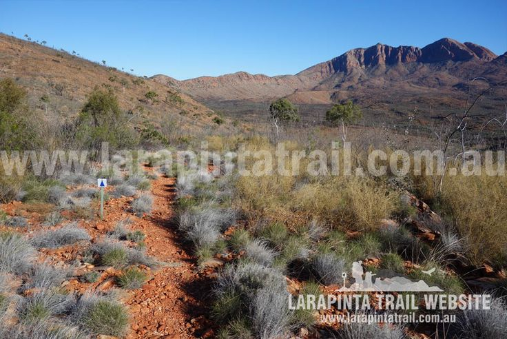 Great western views of the scenery and Mount Sonder. Image taken near The Fault just after the descent from Hilltop Lookout (on the NW side). © Explorers Australia Pty Ltd 2014