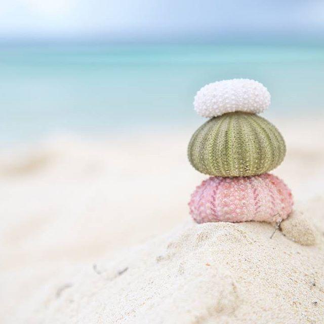 今年の夏も宮古島へ。 綺麗なblueに癒されました♪  #simpleoclock #summer #summervacation #sea…