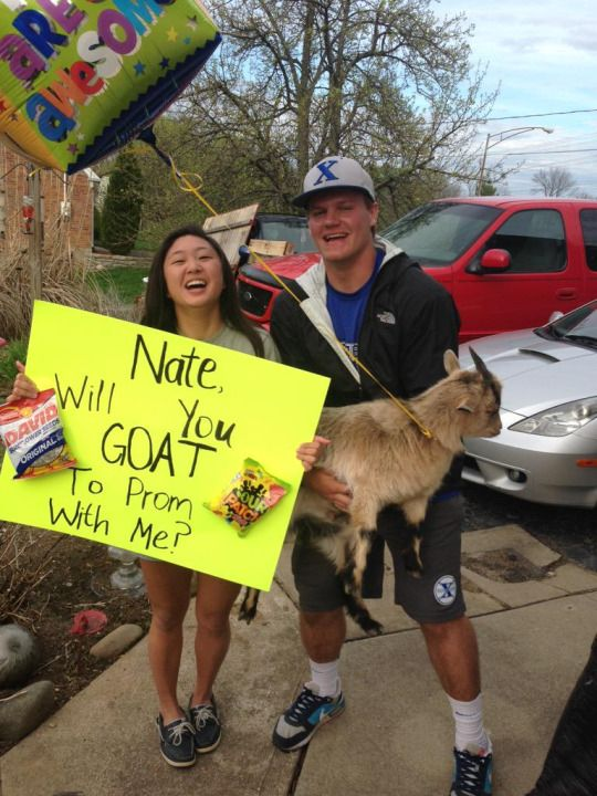 FAV ! why have an offensive promposal when u can do this