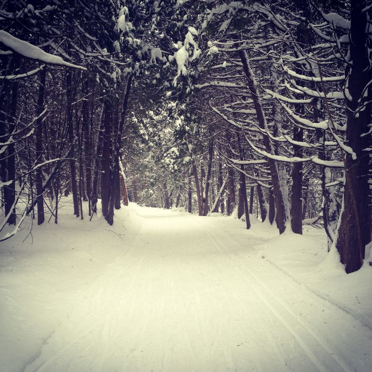 Winter's beauty and creating my own path where other's have gone before me at Monora Park near Orangeville Ontario
