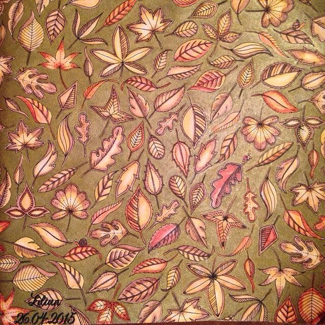 Jardim Secreto e Floresta Encantada  Livro de Colorir  Inspirações