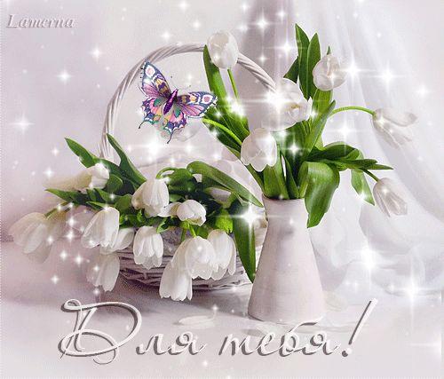 Анимация Белые тюльпаны в корзинке и вазе, с бабочкой на фоне белой ткани (Для…