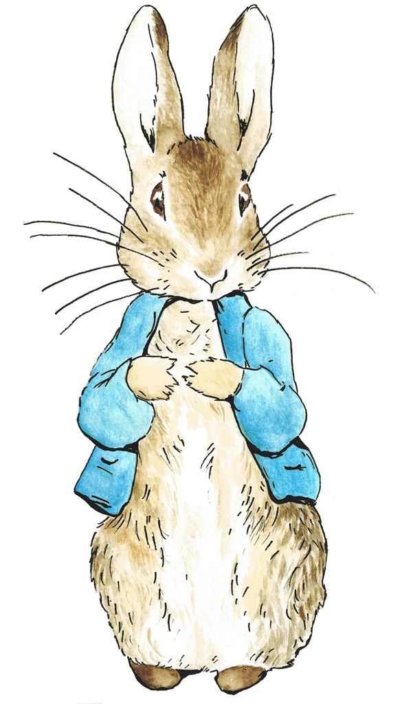 Peter Rabbit Yahoo Image Search Results Rabbit Peter