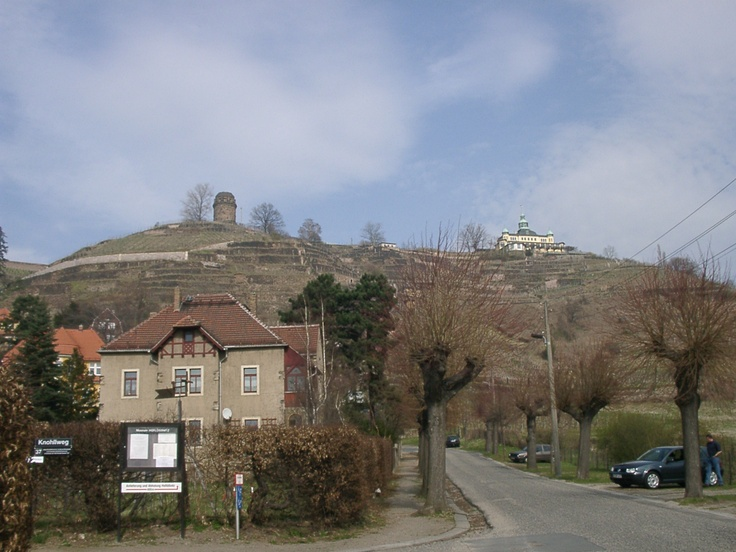 Wine Hill In Radebeul, Germany