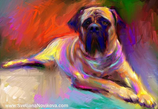 English Bull mastiff dog painting Svetlana Novikova by www.SvetlanaNovikova.com, via Flickr