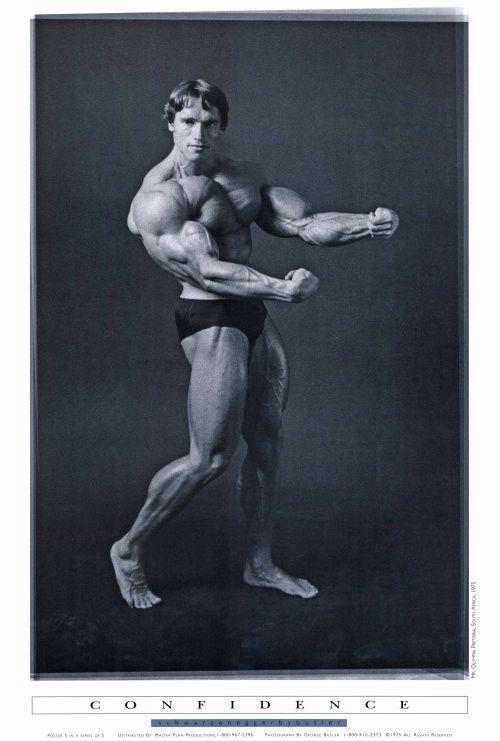 278 best Arnold Schwarzenegger images on Pinterest Bodybuilding - fresh arnold blueprint day 11