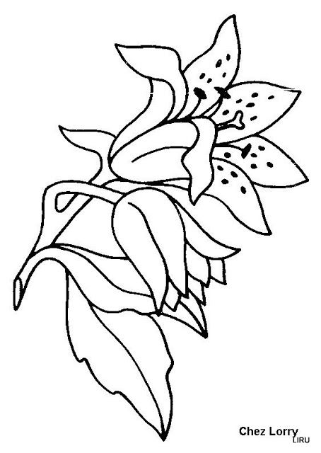 Plantillas de flores para bordar a mano | Plantillas | Pinterest ...