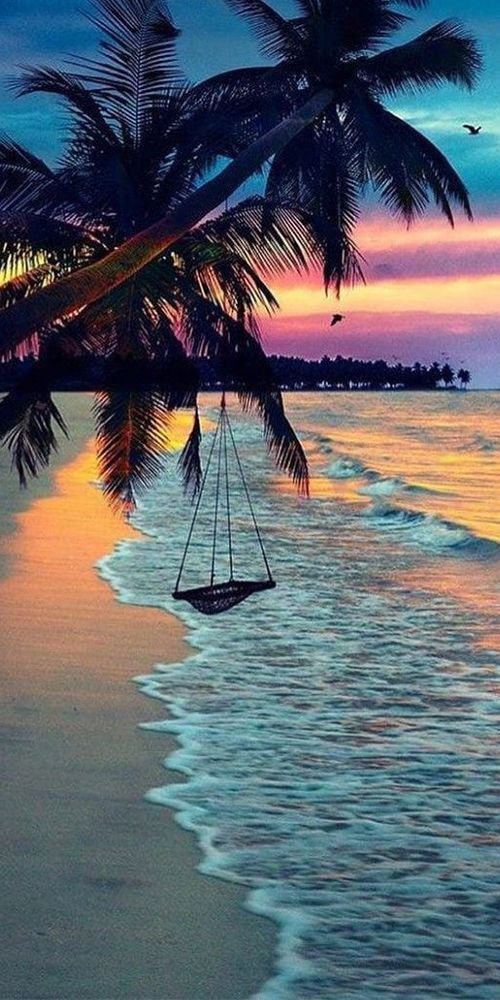 Beach La Swing Warm Paradise Tropical Dream World Photo