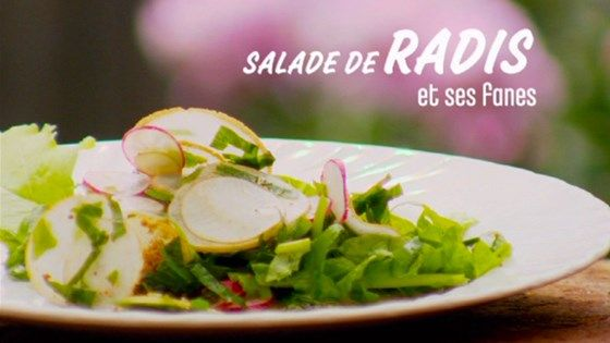 Salade de radis et ses fanes