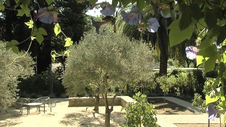 17 Opulent Mediterranean Landscape Designs Are The Daily: 10 Best Landscaping Inspiration Images On Pinterest