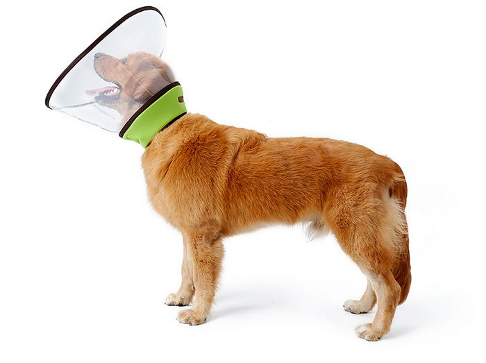 Pet Recovery Collar For Surgery With Elastic Loops Protective