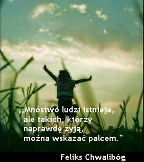 Skarbie zrozum, takie życie.: Feliks Chwalibóg