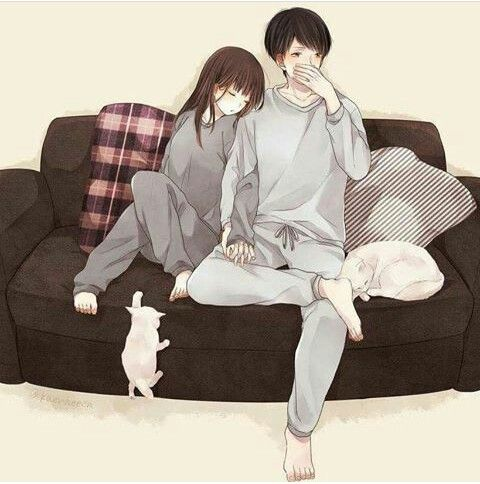 Wanna sit like this and sleep in your arms and sacrifice a whole world for you with our cute,little white Cat (mano_billi) love u