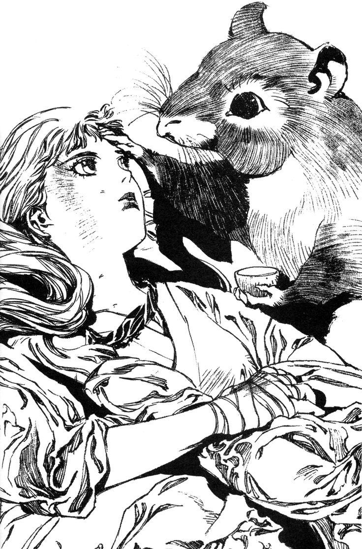 陽子 Youko、楽俊 rakushun :『月の影 影の海』十二国記 Juuni Kokki / Twelve Kingdoms - art by Yamada Akihiro 山田章博