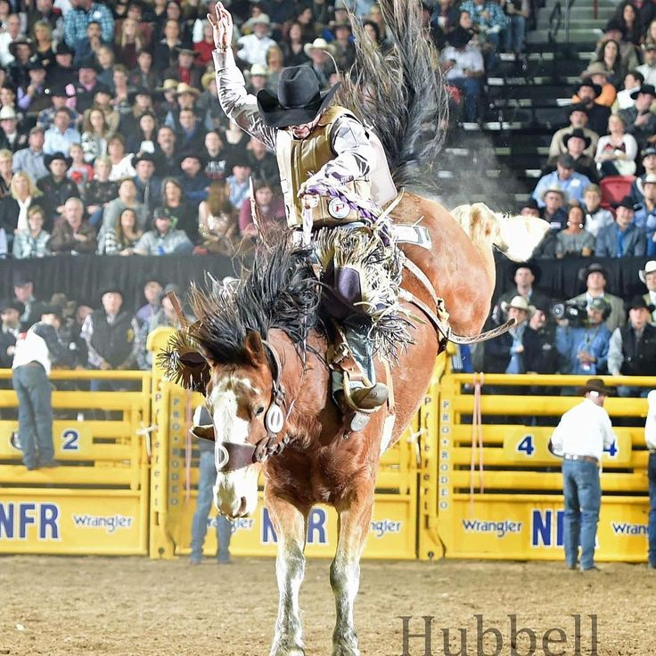 Wow, what a great first Wrangler National Finals Rodeo!  I was truly blessed to get on some great bucking horses and ride with 14 other saddle bronc riders that are the best in the world.  It was a dream come true to not only compete at the WNFR, but also win two go rounds and finish second overall in the average.  I have had an amazing 2017 rodeo year to finish 4th in the PRCA World Standings. I just want to take this time to thank everyone.  Thank you to my family for all the love…