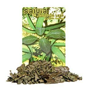 Organic Salvia Leaf