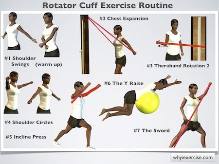 rotator cuff  | Rotator cuff exercises: mprove your strength for lifting & overhead ...