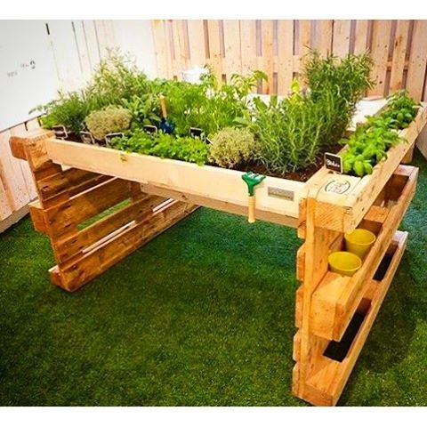 deck plantas palletes - Pesquisa Google